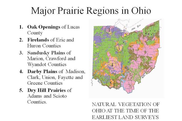 Ohio Prairie Regions